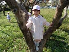 柿畑・4.JPG