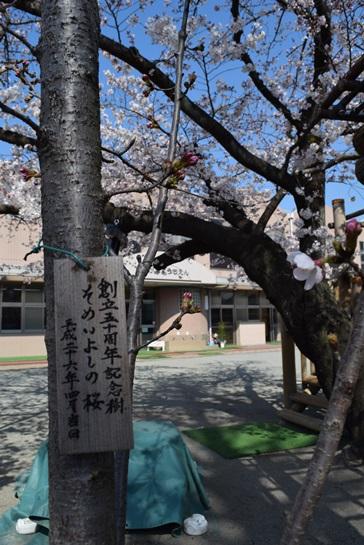 記念樹2.jpg