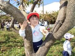 木登り かける.JPG