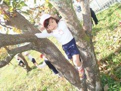 木登り かほ.JPG