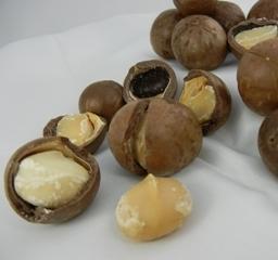 マカダミアナッツ1