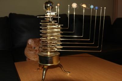 猫と太陽系