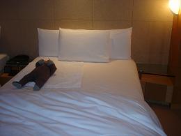 ↑honoと一緒に寝てもかなり余裕がありました。