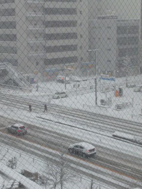 2012年2月2日雪?