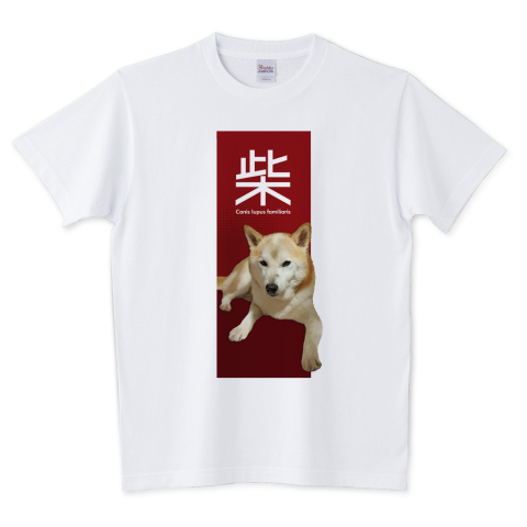 おとこまえ柴 Tシャツ