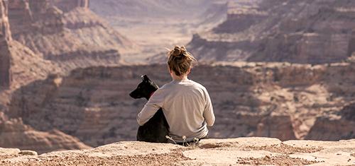 dog and me