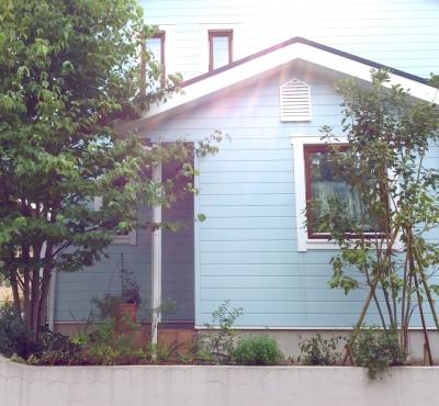 スウェーデンハウス 庭 外壁 水色 ナチュラル 植栽 デザイン ガーデニング 低木 下草