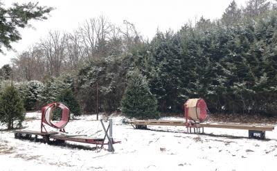 クリスマスツリー ダグラス アメリカ ファーム ニュージャージー 雪 カット ネット 持ち運び