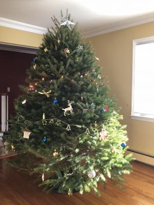 クリスマスツリー 香り ダグラス アメリカ ファーム ニュージャージー 雪 カット 飾り オーナメント 大きい