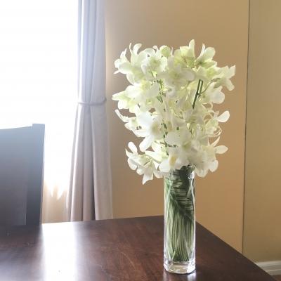 花生け 花瓶 ガラス フラワーアレンジメント フラワーデザイン 蘭 白 観葉植物 floral design flowers arrangement white orchid greenery glass vase garden fondly