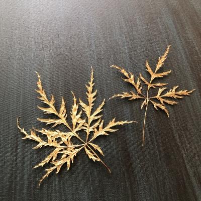 もみじ カエデ 押し花 押し葉 ドライフラワー 絵 日本クラブ 美術展 入選 Japanese maple dried leaves canvas gold Nippon club New York 2020 gallery garden fondly