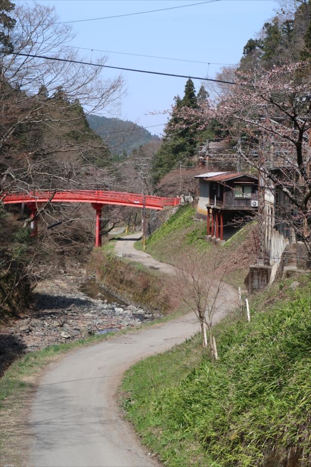 京大坂道の画像 p1_8