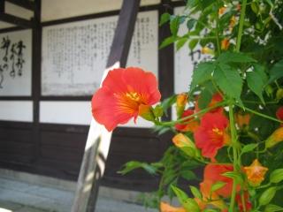 s-IMG_0993.jpg