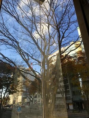 a-IMG_2328-photo.jpg