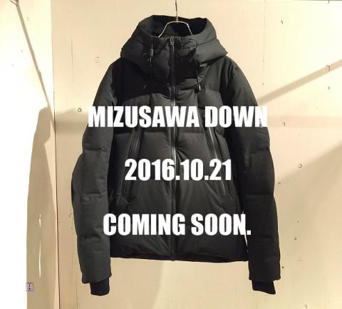 水沢DOWN20161021.png