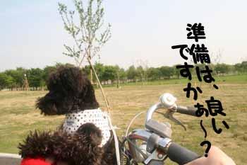 キング オブ ブロッカー 竹の塚駅前校