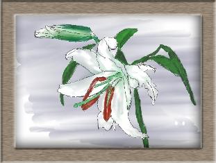 水彩画で、ゆり 描いてみました!