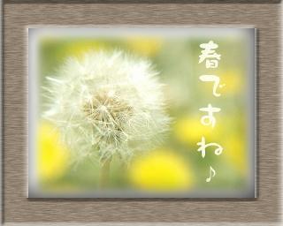 足立区竹ノ塚 春ですね!
