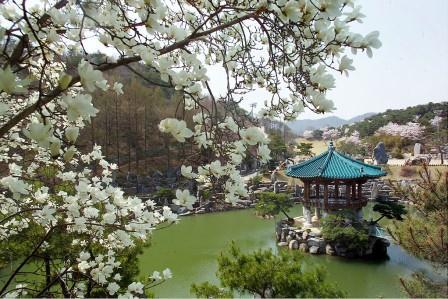 摂理の自然聖殿の美しい景観