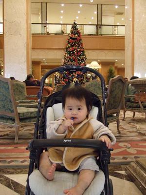 リーガロイヤルホテル堺のクリスマスツリー