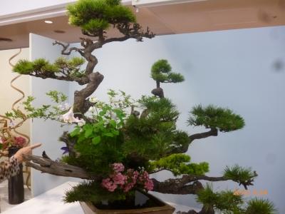 日本いけばな芸術中国展