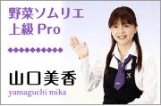 yasaipro.jpg