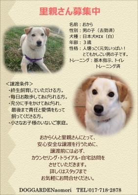 おからポスター.JPG