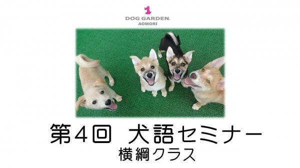犬語ロゴ.jpg