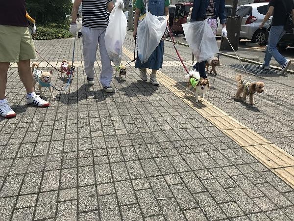 マナーアップ&キープクリーン大作戦.jpg