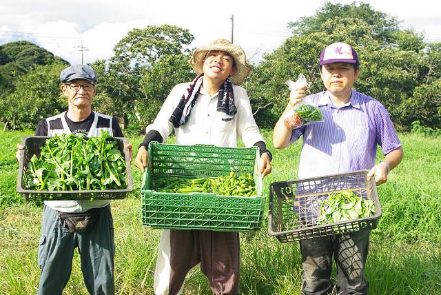 haco農作業ss.jpg
