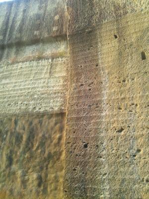 壁を細かく見るとこんな。