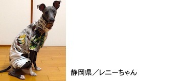 takekawa2016514.JPG