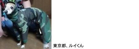 masuo20171010.JPG