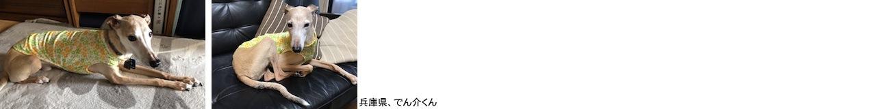 ito2018525.JPG
