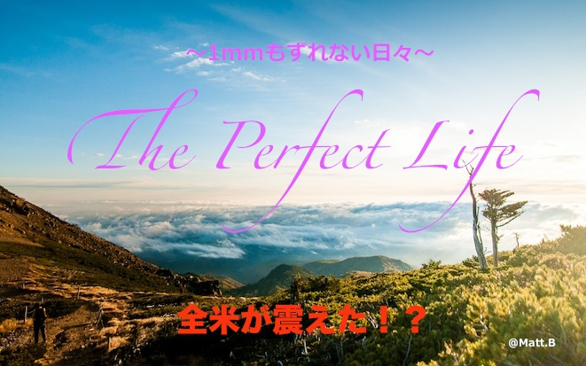 「The Perfect Life」.jpg