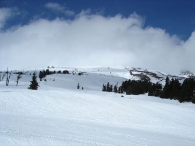 Mt.Hood