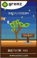 鯉のぼり4