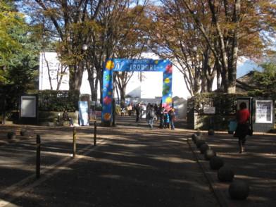 欅祭1日目2