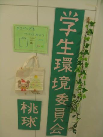 欅祭2日目22