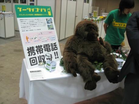 NEW環境展2009その58