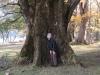 大きな木のくぼみは温かい
