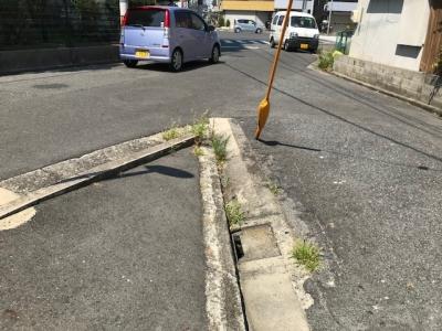 草刈り (5).jpg