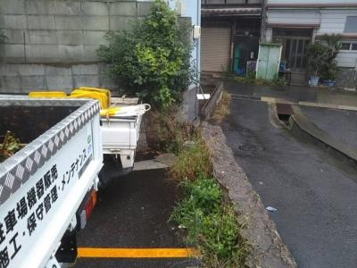 草刈り5.JPG