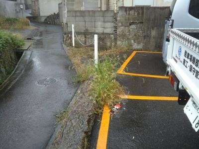 草刈り7.JPG