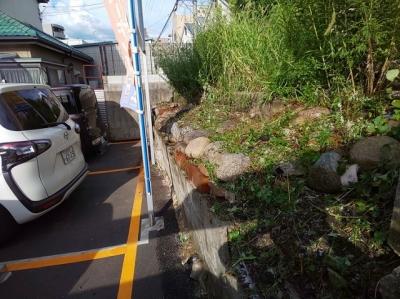 草刈り・除草剤散布4.JPG