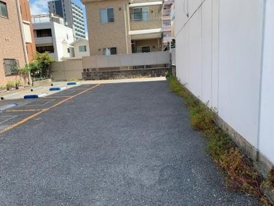 草刈り1.jpg