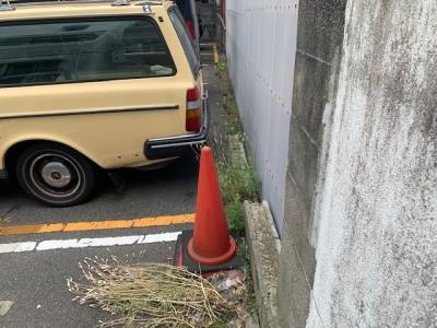 場内草刈り9.jpg