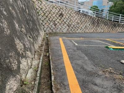 草刈り (6).jpg