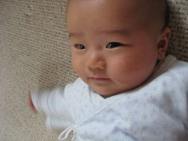 ぴんちゃん200806