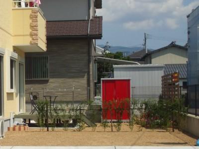 生垣(プリペット)
